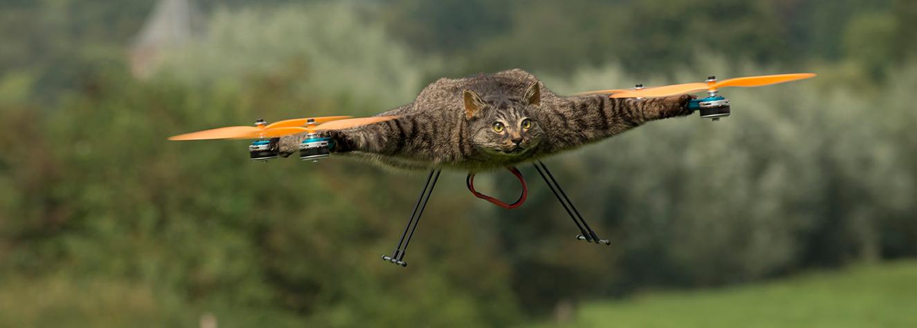 Orvillecopter - Bart Jansen
