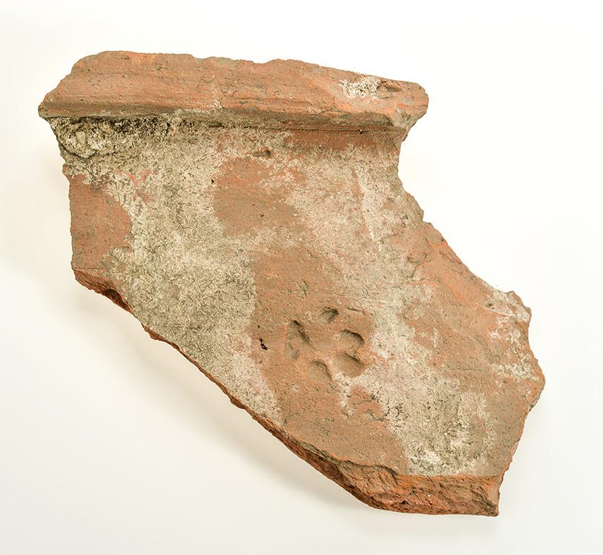 Sporen van katten in België (175-275 n.Chr.)